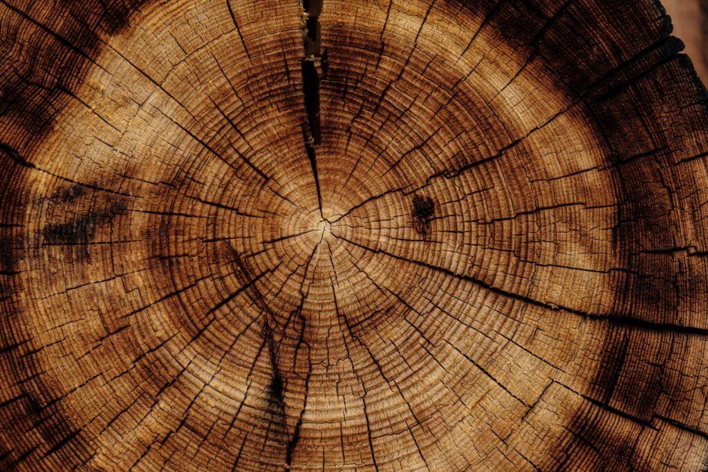 木材イメージ画像